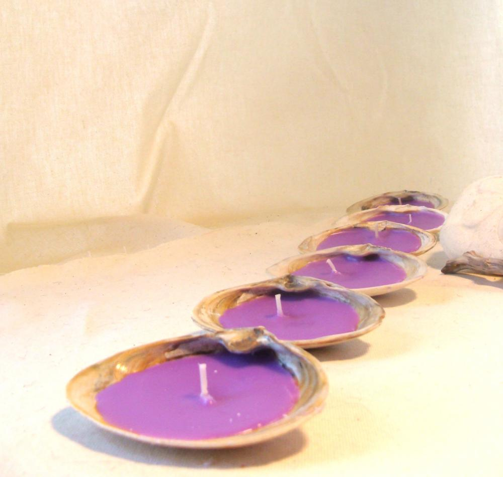 Candles Tealight Seashells Ocean Lavender Clam Shells